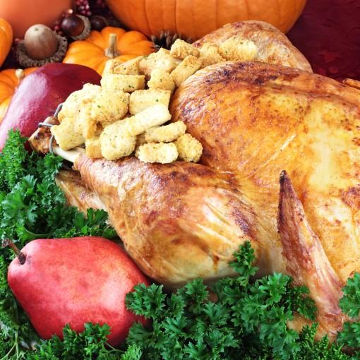 Shopping For Organic Turkey