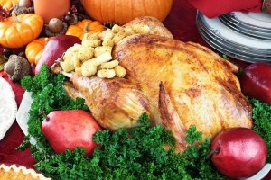 Organic Turkey Shopping Guide